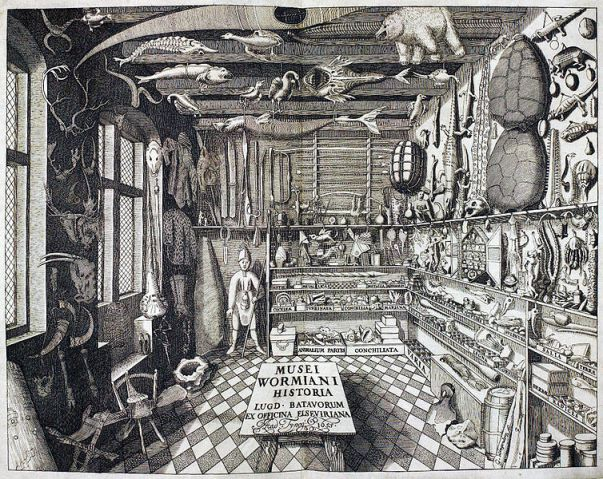 Frontispice de Musei Wormiani Historia montrant l'intérieur du cabinet de curiosités de Worm.