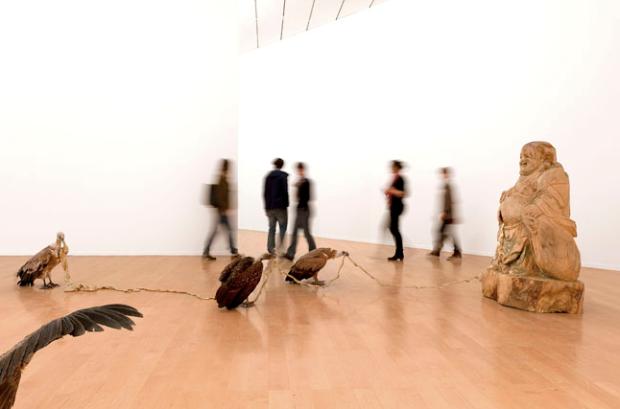 Vue de l'exposition Huang Yong ping, Amoy/Xiamen, courtesy de l'artiste et de Kamel Mennour, Paris, Photo blaise Adilon, ADAGP, Paris 2013.